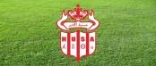 شعار حسنية اكادير لكرة القدم