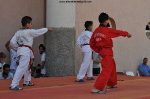 Arts Martiaux et Nutrition - Ajial Taekwondo Tiznit 20-05-2017 _06