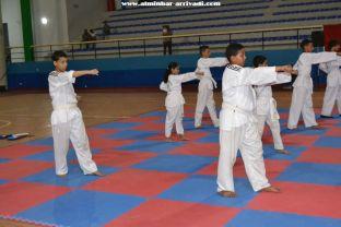 Taekwondo Passage de Grades USATBBA 20-05-2017_51