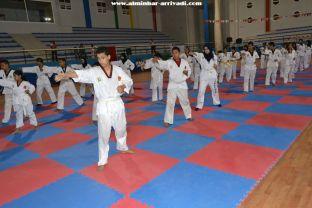 Taekwondo Passage de Grades USATBBA 20-05-2017_52